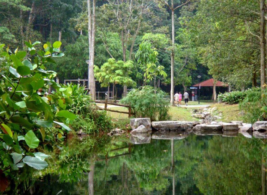 bukit-batok-nature-park-singapore