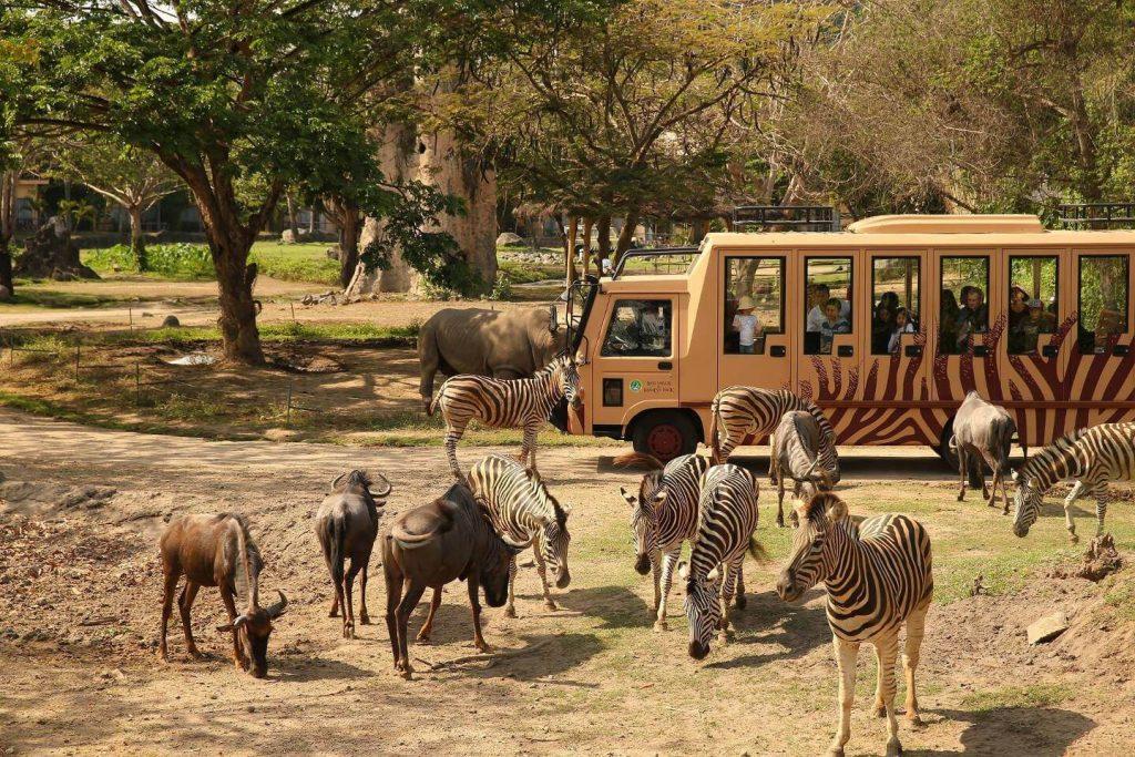bali-safari-marine-park-kebun-binatang-di-bali