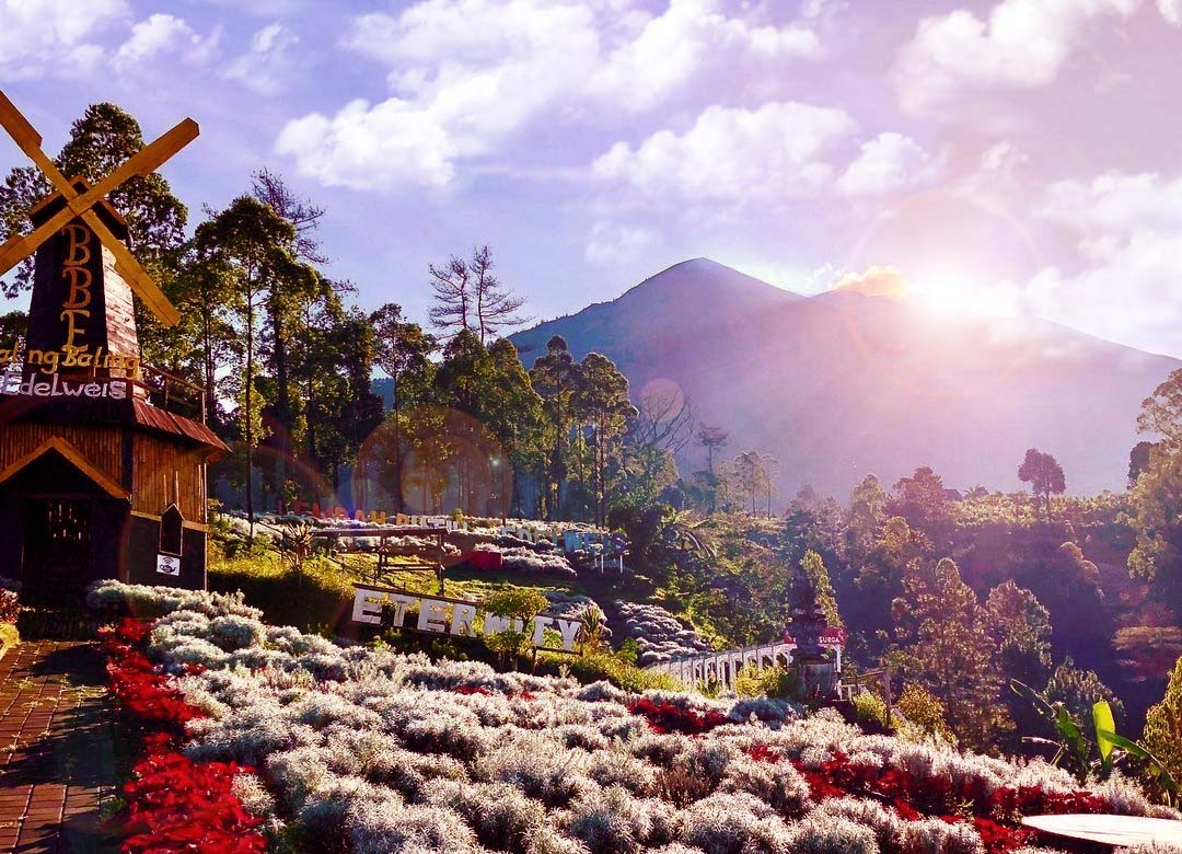 tempat-wisata-karangasem-edelweis-bali