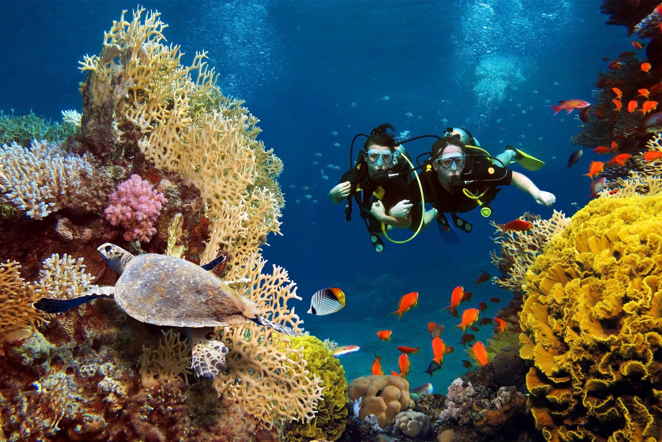 scuba-diving-tanjung-benoa-bali