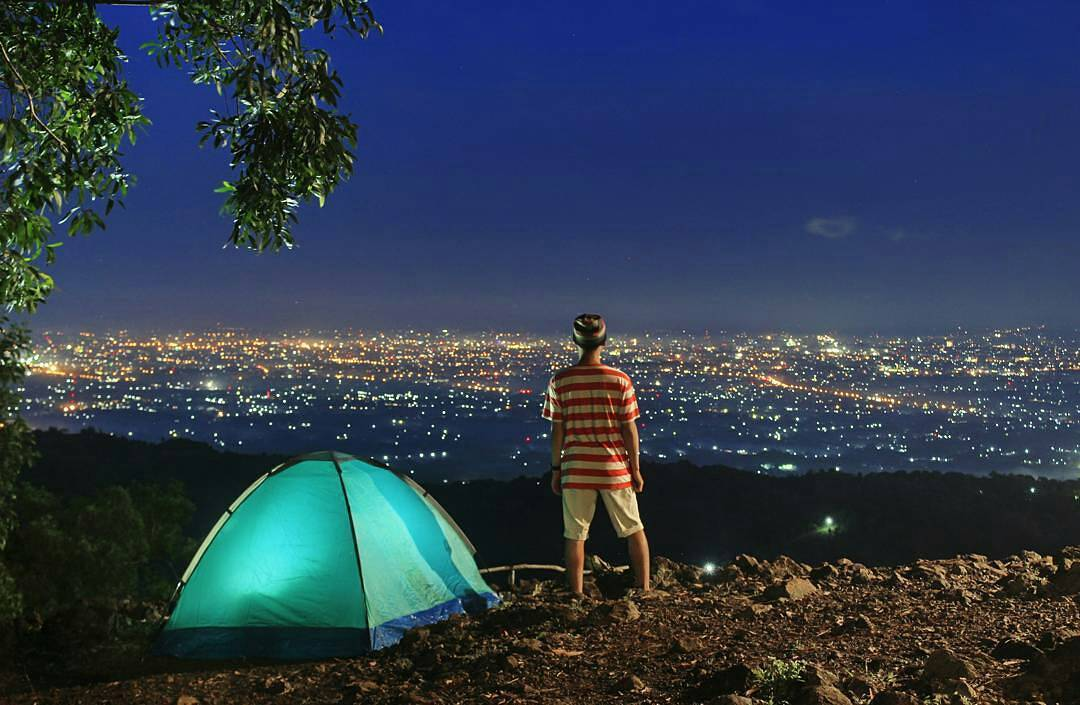 camping-di-hutan-pinus-pengger