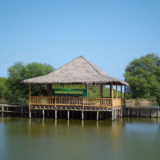 kolam-pancing-ekowisata-mangrove