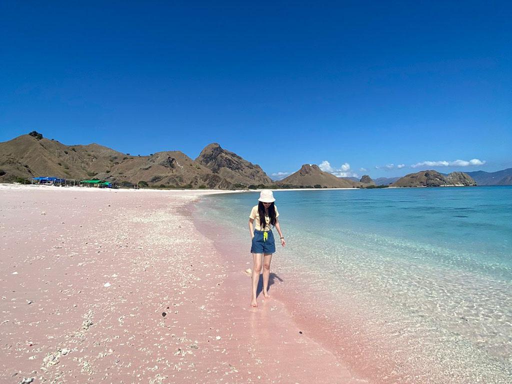 pink-beach-taman-nasional-komodo-labuan-bajo